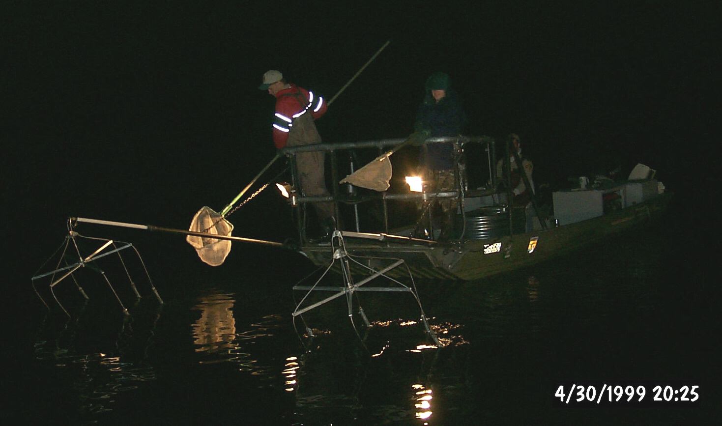 Fall Walleye Assessments
