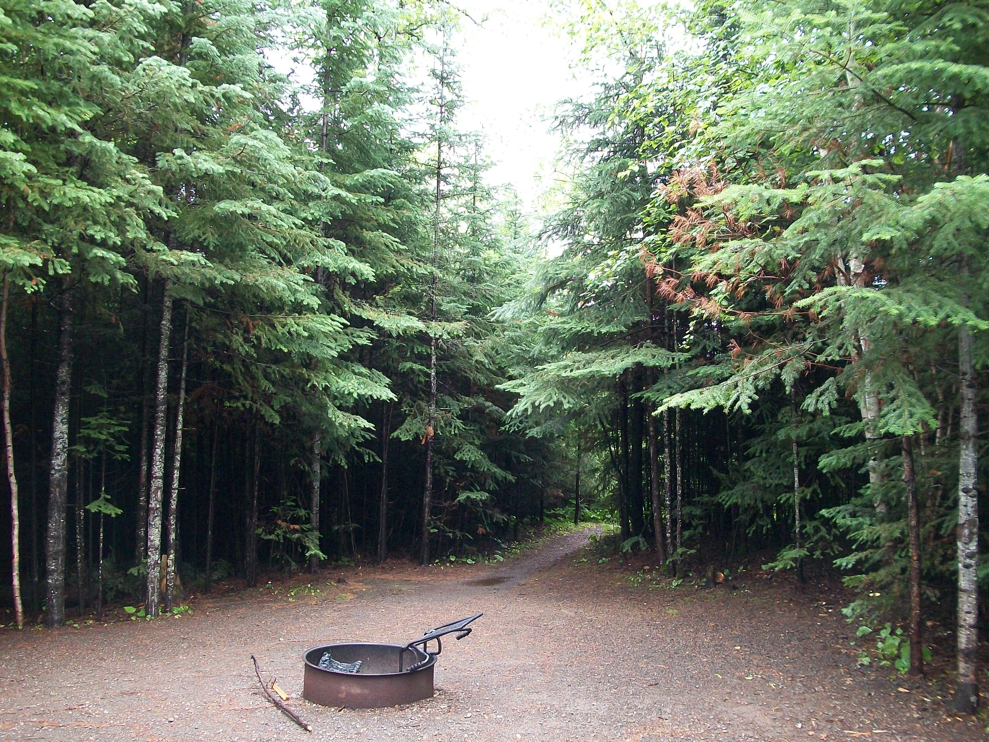 Treaty Camping in the Superior National Forest